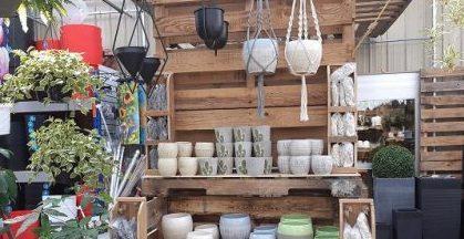 Pot et décoration